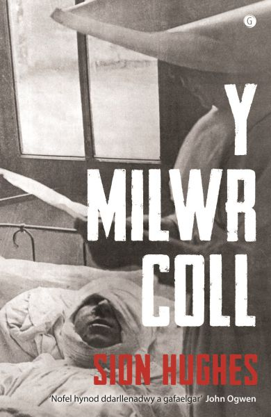 Milwr Coll, Y