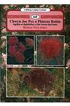 Llyfrau Llafar Gwlad:60. Chwyn Joe Pye a Phincas Robin - Ysgrifau ar Ryfeddodau a Llên Gwerin Byd Natur