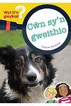Cyfres Wyt Ti'n Gwybod?: Cŵn Sy'n Gweithio
