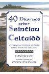 40 Diwrnod Gyda'r Seintiau Celtaidd - Myfyrdodau Dyddiol yn Dilyn Hanes y Seintiau Celtaidd