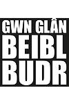 Gwn Glân, Beibl Budr - Lleuwen