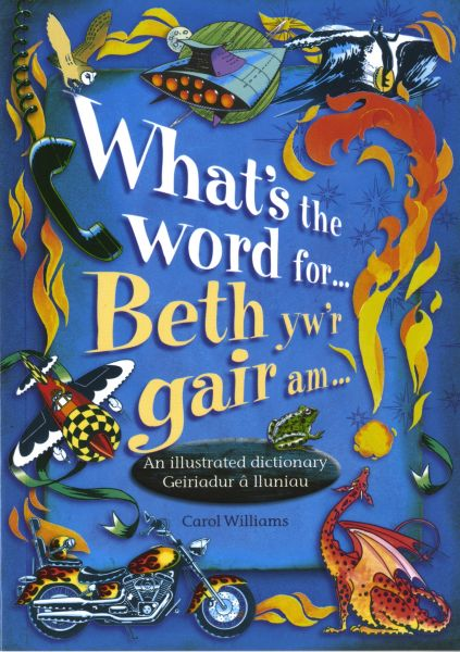 What's the Word For...?/Beth Yw'r Gair Am...? - An Illustrated Dictionary/Geiriadur â Lluniau