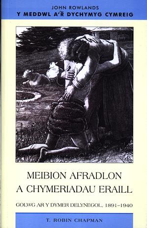 Meddwl a'r Dychymyg Cymreig, Y: Meibion Afradlon a Chymeriadau Eraill - Golwg ar y Dymer Delynegol, 1891-1940