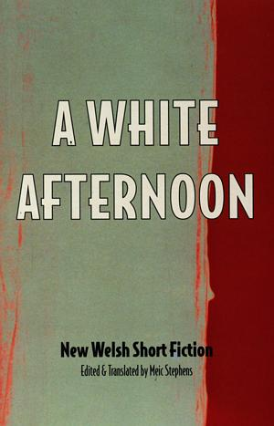 White Afternoon & Other Stories, A - New Welsh Short Fiction