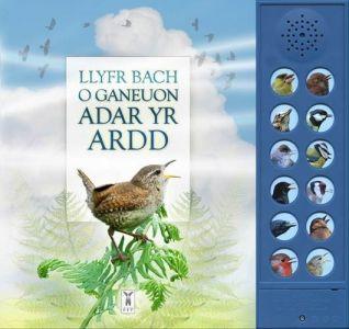 Llyfr Bach o Ganeuon Adar yr Ardd (Llyfr Sain)