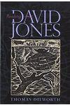 Reading David Jones