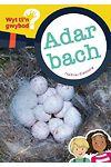 Cyfres Wyt Ti'n Gwybod?: Adar Bach