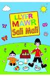 Llyfr Mawr Sali Mali