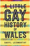 Little Gay History of Wales, A