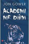 Academi Mr Dŵm