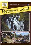 Bienvenue - Betws-y-Coed (Ffrangeg)