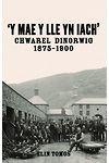 'Y Mae y Lle yn Iach' - Chwarel Dinorwig 1875-1900