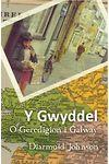 Gwyddel, Y - O Geredigion i Galway