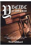 Beibl yn Iaith y Bobol, Y