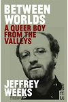 Between Worlds - Queer Boy from the Valleys, A